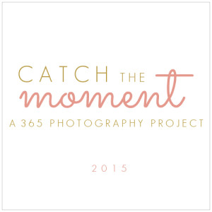 catch the moment button rose and gold 500